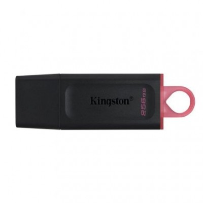 Kingston 256Gb USB 3.2 Exodia